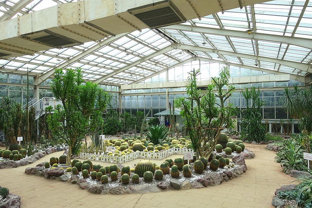 Ботанический сад Чэнду