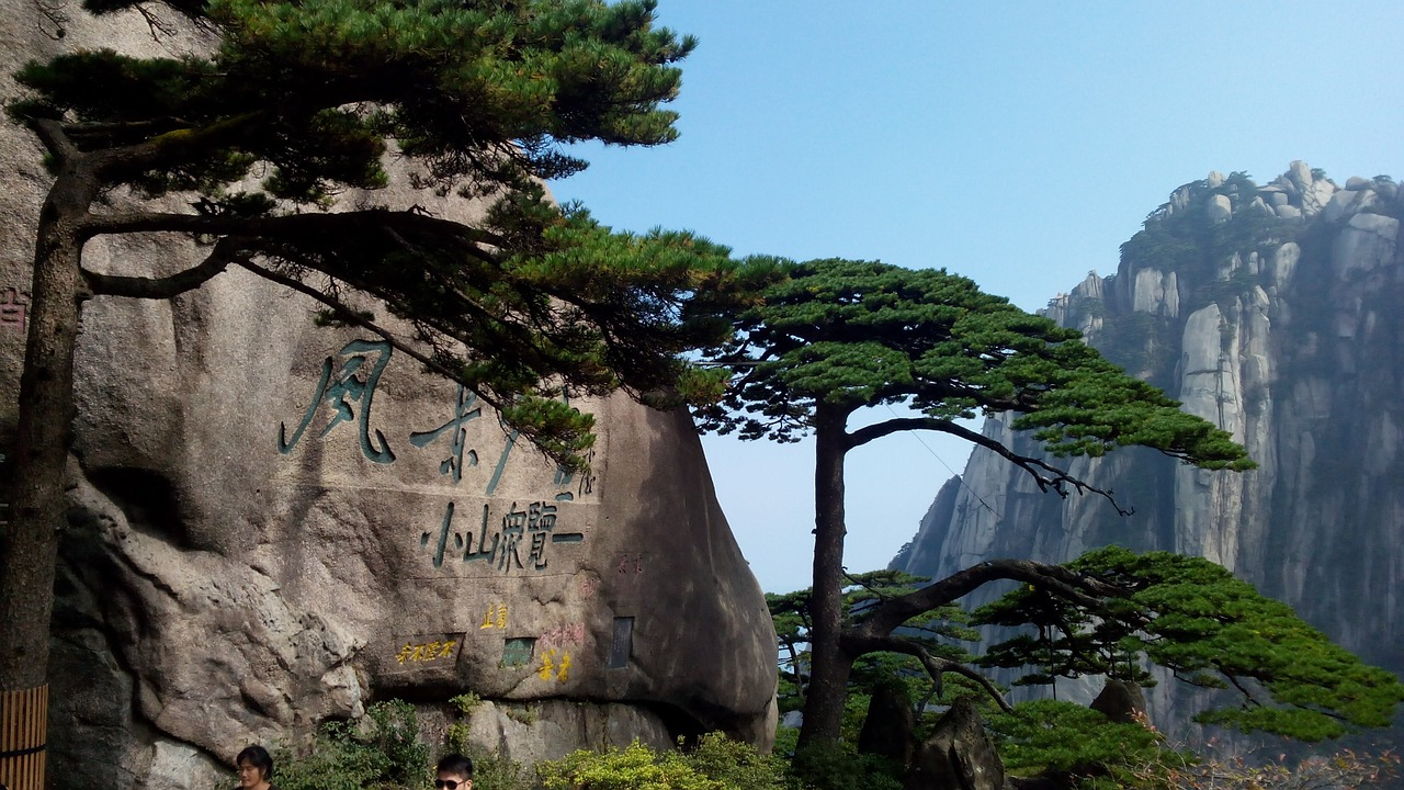 Welcoming Guests Pine Huangshan