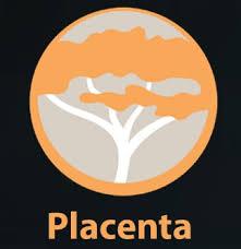 Placenta Kodi