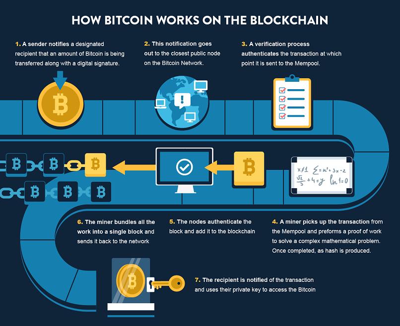 bitcoin ledger public