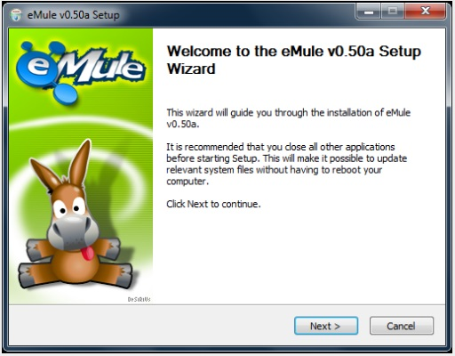 screenshot of eMlue setup wizard