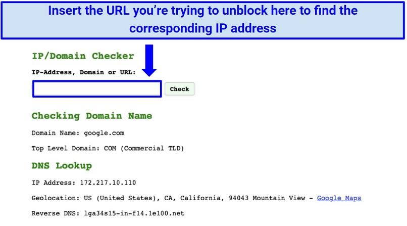 Screenshot of IP checker