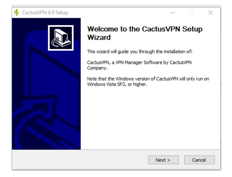 A screenshot of CactusVPN setup wizard