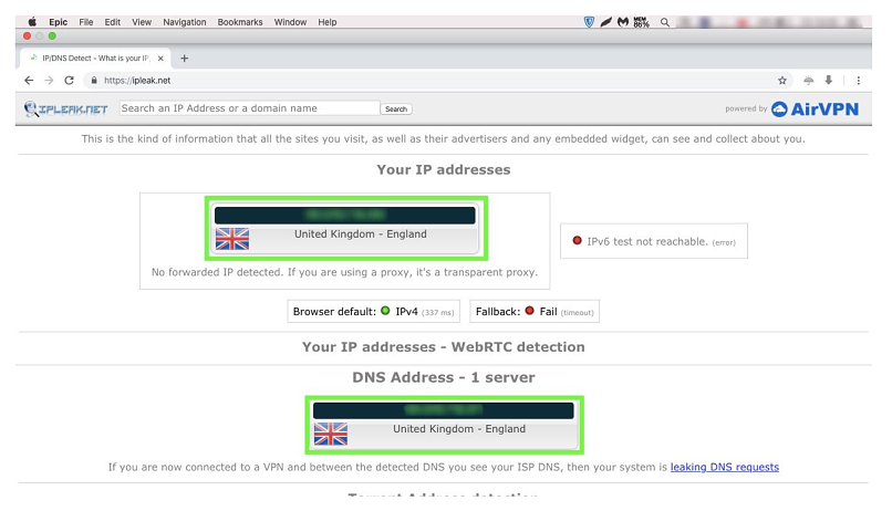 A screenshot of IP and DNS leak test results