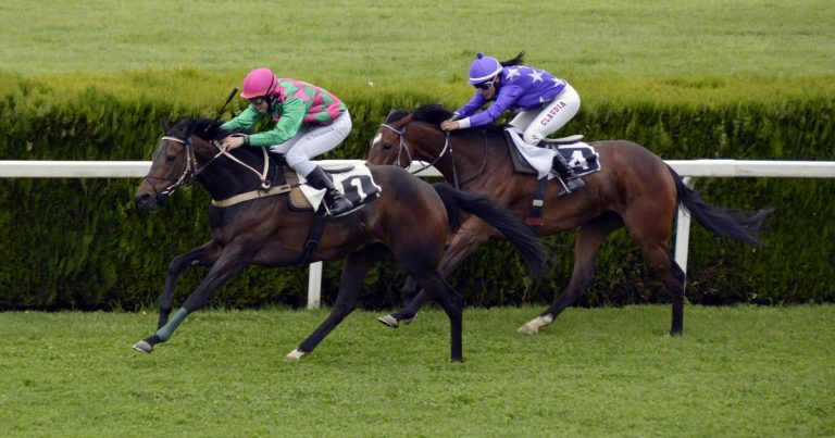 Horse race on a turf track